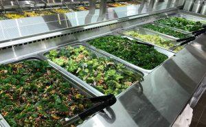 farm-boy-etobicoke-salad-bar