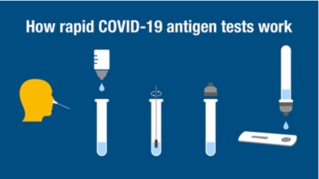 An illustration of how a rapid COVID-19 antibody tests work