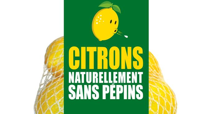 wonderful-citrus-seedless-lemon